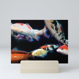 Nishikigoi(Japanese Colored Carp) 01 Mini Art Print