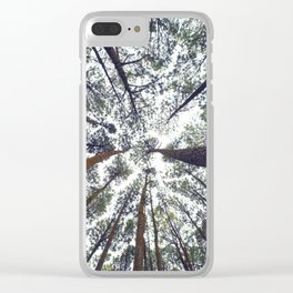 Light Through the Trees Clear iPhone Case