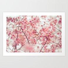 Spring is here. Art Print
