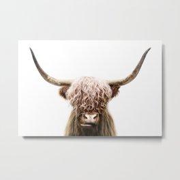 Scottish Highland Cow Metal Print