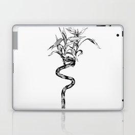 Vintage Lucky Bamboo Laptop & iPad Skin