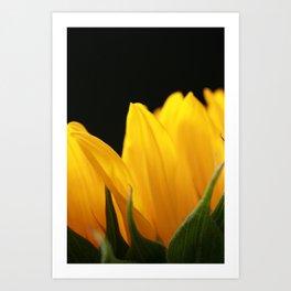 Flor del Sol Art Print