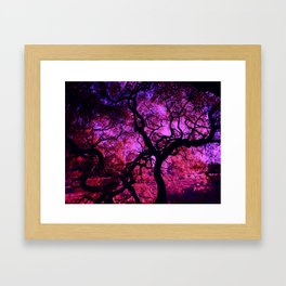Under the Tree in Pink and Purple Framed Art Print