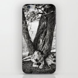 African Safari Lion iPhone Skin