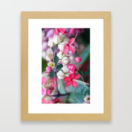 Red Pink and White Tropical Flowers Framed Art Print