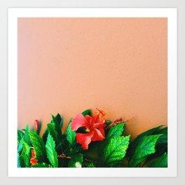 The Affair of the Tropics Art Print