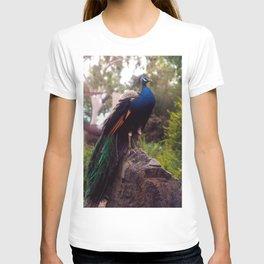 Peacock Rock T-shirt