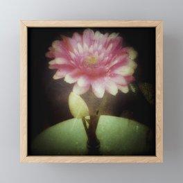 Vintage Dreamy Flower Framed Mini Art Print