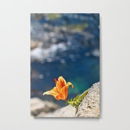 Beauty by the Waters Metal Print