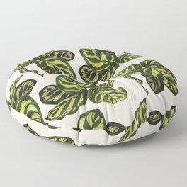calathea botanical interior plant Floor Pillow