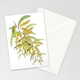 Australian Wattle Flower, Illustration Stationery Cards