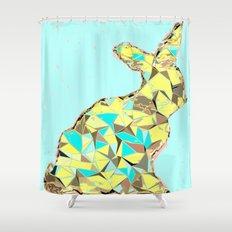 Spring bunny Shower Curtain