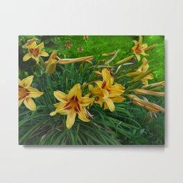 Regal Lilies Metal Print