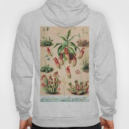 Carnivorous plants from 1898 Hoody