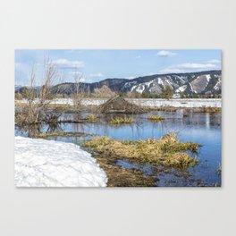 Nice Digs Canvas Print