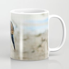 Yellow-crowned Night Heron on Ding III Coffee Mug