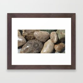 Petoskey Stones Framed Art Print
