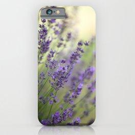 #Dream #beautiful #Garden #Lavender iPhone Case