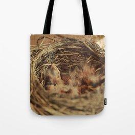 Baby Robbin Tote Bag