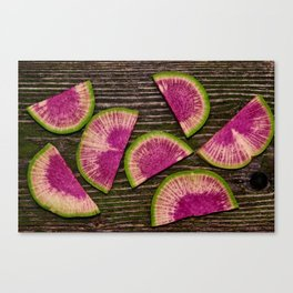 Watermelon Radishes Canvas Print
