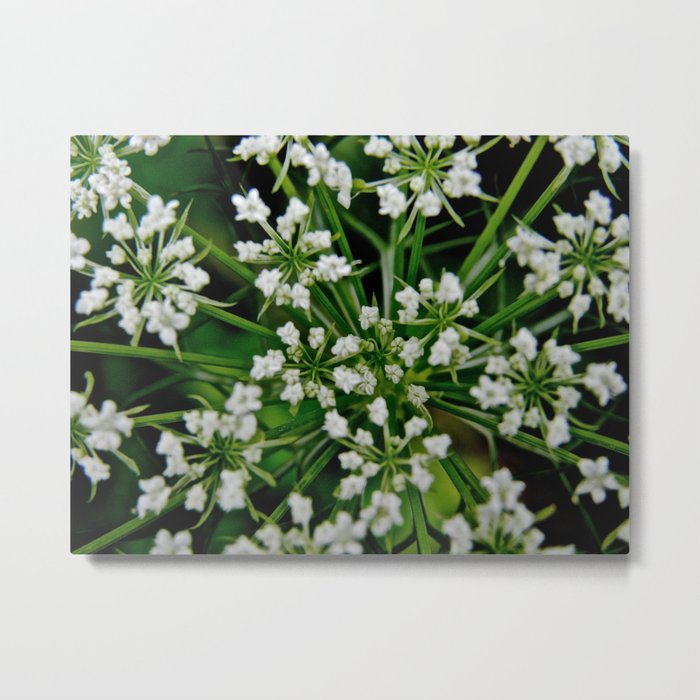Falling Into Flowers Metal Print