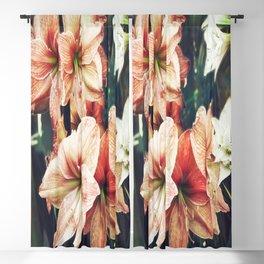 Amaryllis Blackout Curtain