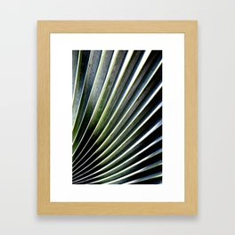 Winding Ridge Palm Tree Framed Art Print