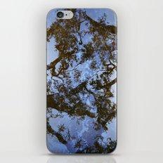 Filamental iPhone & iPod Skin
