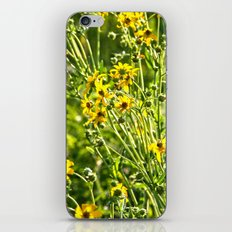 Wild Sunshine iPhone & iPod Skin