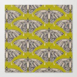 swallowtail butterfly citron basalt Canvas Print