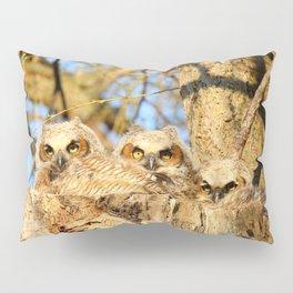 The three musketeers Pillow Sham