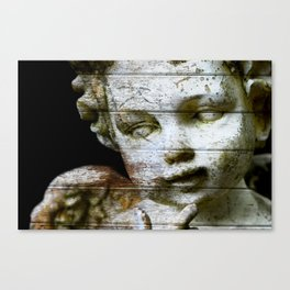Visions from the Sky Canvas Print