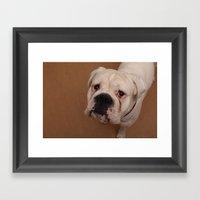 My dog Konstantin Framed Art Print
