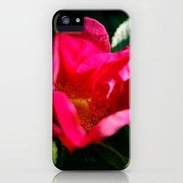 Glowing Wild Alaskan Rose by Mandy Ramsey, Haines, Alaska iPhone Case