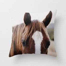 Benny the Brown Horse Throw Pillow