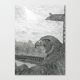 The Urban Peregrine Canvas Print