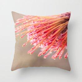 Hakea flower 1 Throw Pillow