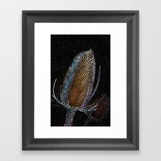 Golden Teasel Framed Art Print
