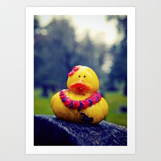 Lonely duck Art Print
