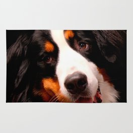 Bernese Mountain Dog Rug