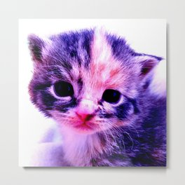 Blue Pink Cute Little Cat Metal Print