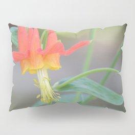 Pastel Columbine Afternoon Pillow Sham