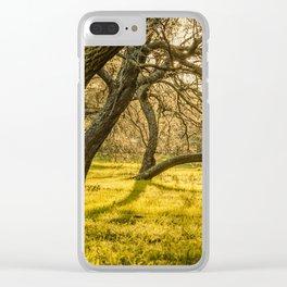 Prado Park, Montevideo, Uruguay Clear iPhone Case