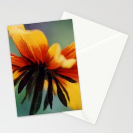 Bee's Eye view of a Black-eyed Susan Stationery Cards