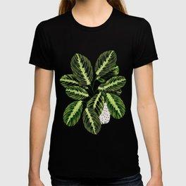 Maranta Lemon lime interior Plant T-shirt