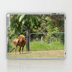 Beautiful miniature horse mare Laptop & iPad Skin