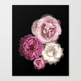 Purple, Pink, and White Roses Canvas Print