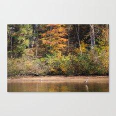 Autumn Heron Canvas Print