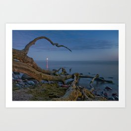 Branched Seascape Art Print