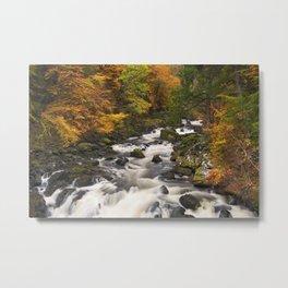 I - River through autumn colours at the Hermitage, Scotland Metal Print